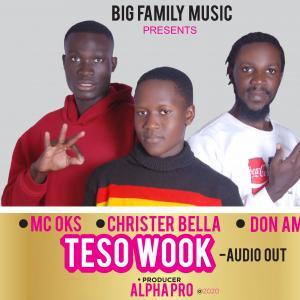 Teso Wook