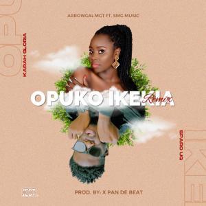 Opuko Ikekia (Remix)
